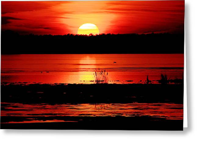Red Sky Reflected Greeting Card by DK Hawk