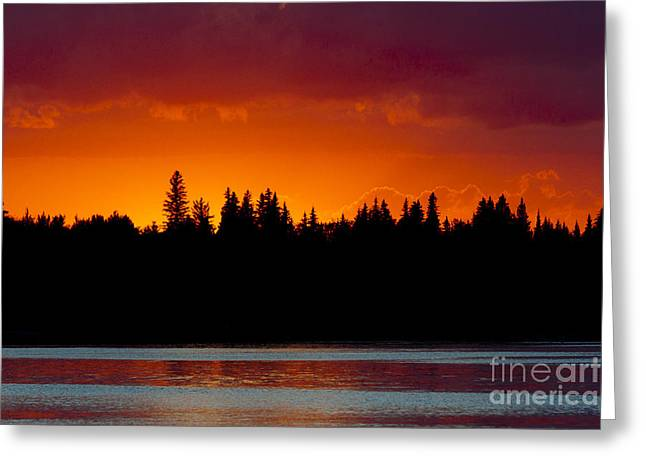 Sand Patterns Greeting Cards - Red Sunset along Treeline Greeting Card by Darcy Michaelchuk