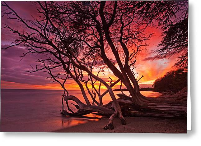 ; Maui Greeting Cards - Red Sunset Greeting Card by James Roemmling