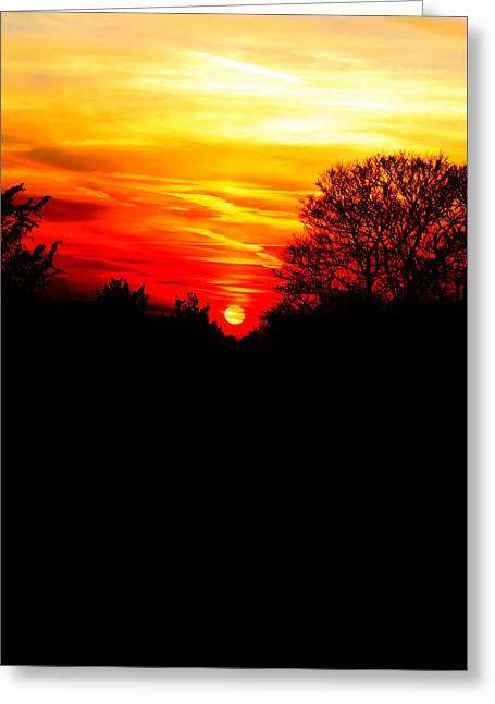 Evening Lights Greeting Cards - Red sunset vertical Greeting Card by Jasna Buncic