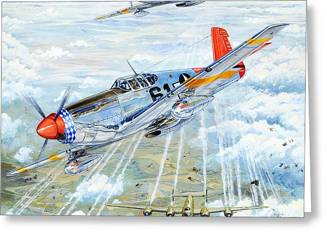 Red Tail 61 Greeting Card by Charles Taylor