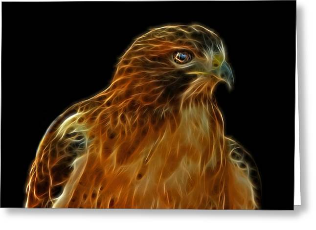 Red Tail Hawk Digital Art Greeting Cards - Red-Tailed Hawk Greeting Card by Sandy Keeton