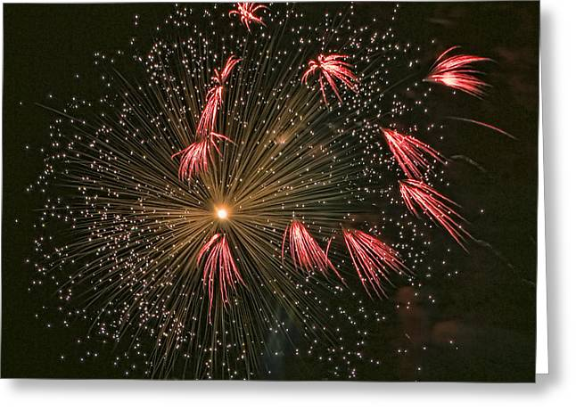 4th July Photographs Greeting Cards - Red Tails Greeting Card by Peter Tellone
