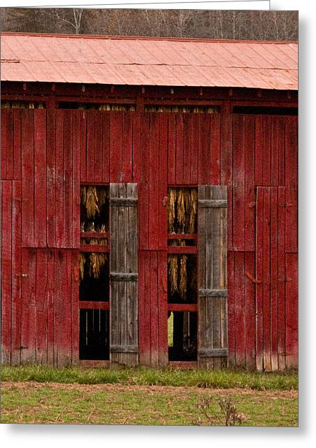 Barn Door Greeting Cards - Red Tobacco Barn Greeting Card by Douglas Barnett