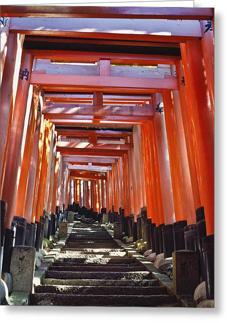 Kyoto Greeting Cards - Red Torii Arches Over Steps At Inari Greeting Card by Axiom Photographic