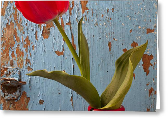 Red Tulip Bending Greeting Card by Garry Gay