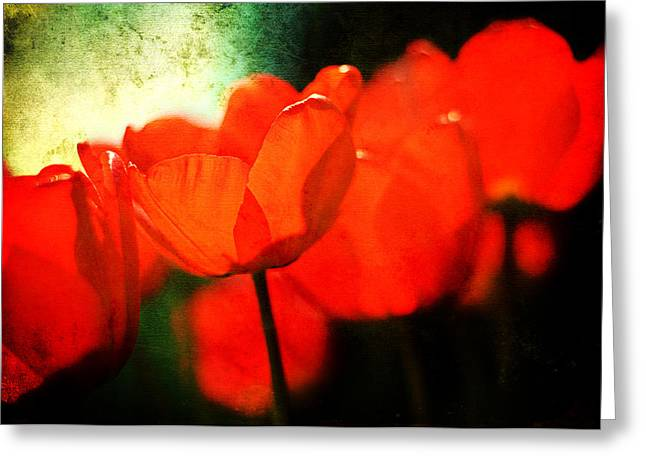 Floriography Greeting Cards - Red Tulips Greeting Card by Rebecca Sherman