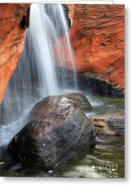 Red Waterfall Greeting Card by Carlos Caetano