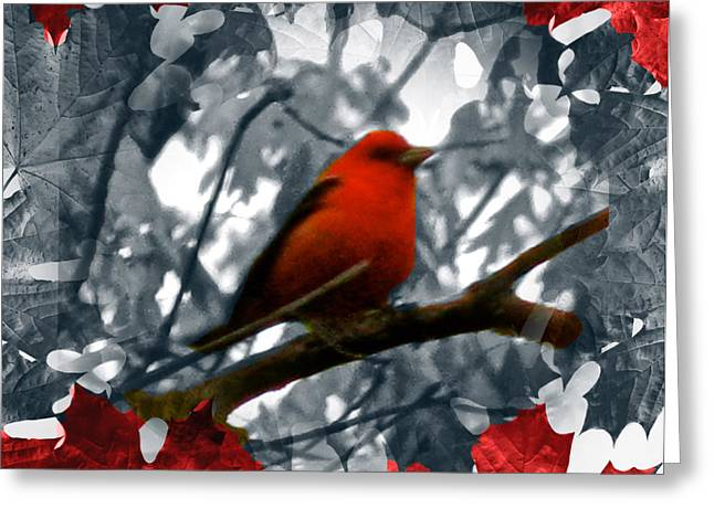 Four Animal Faces Greeting Cards - Red Wild Bird Greeting Card by Debra     Vatalaro