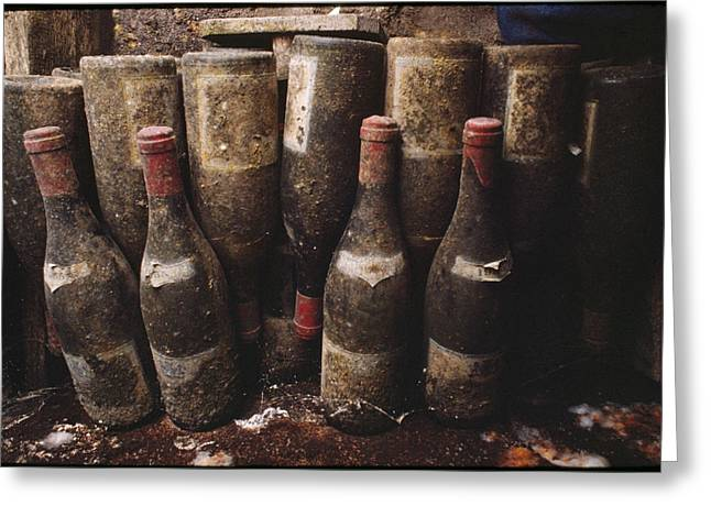 Food Industry And Production Greeting Cards - Red Wine Bottles, Covered With Mold Greeting Card by James L. Stanfield
