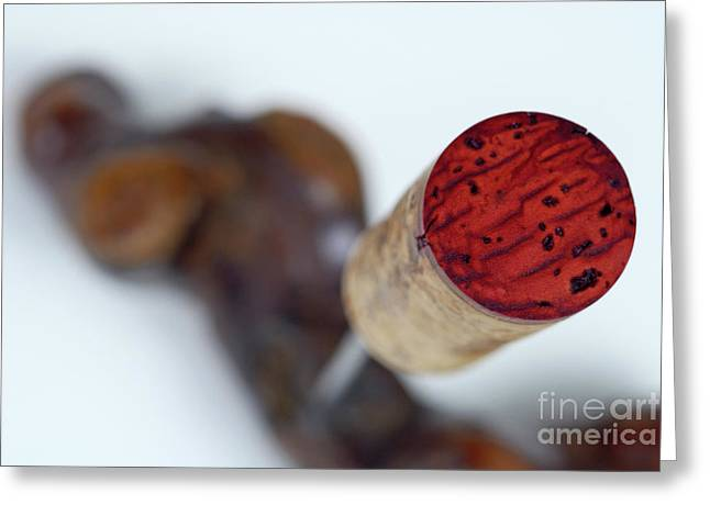 Photography Of Wine Bottles Greeting Cards - Red Wine cork on corkscrew Greeting Card by Sami Sarkis
