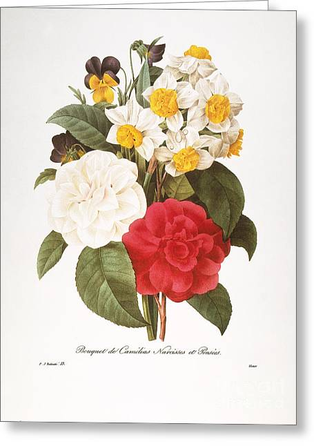 1833 Greeting Cards - Redoute: Bouquet, 1833 Greeting Card by Granger