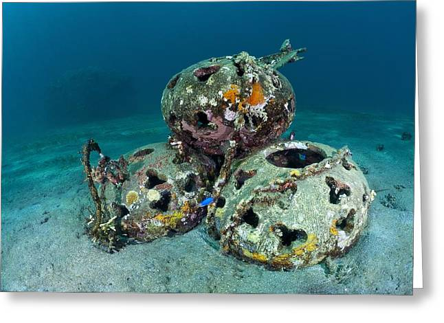 Rehabilitation Greeting Cards - Reef Balls On The Sea Bed, Indonesia Greeting Card by Matthew Oldfield