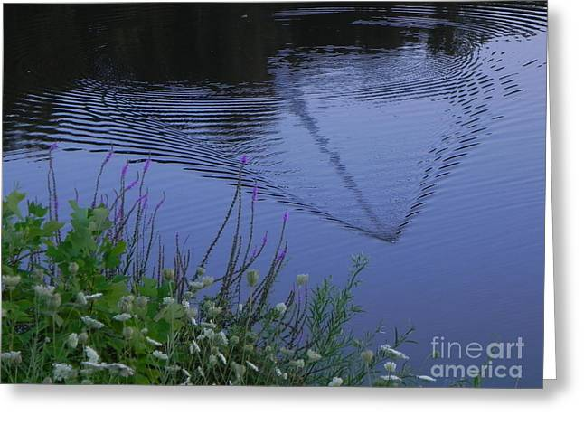 Reeling in the Lure Greeting Card by Sandy Owens