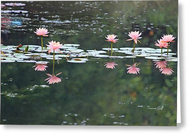 Water Garden Greeting Cards - Reflecting Lily Pond  Greeting Card by Suzanne Gaff