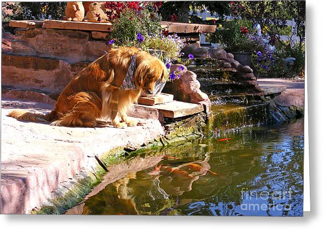Best Friend Greeting Cards - Reflecting Pool Greeting Card by Kara Kincade