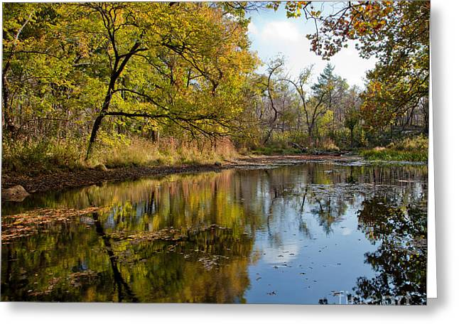 Fall Scenes Greeting Cards - Reflection in a Dreamy Pond Greeting Card by Iris Greenwell