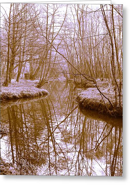 Trees Reflecting In Water Greeting Cards - Reflection Greeting Card by John Hebb