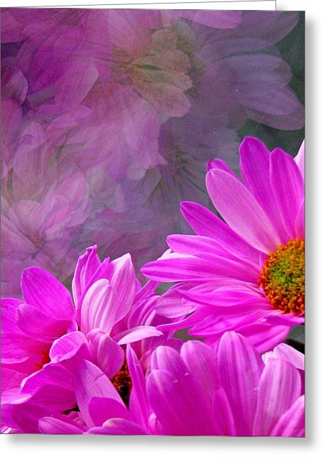 Pink Flower Prints Greeting Cards - Reflection of Flowers in Window Greeting Card by Tam Graff