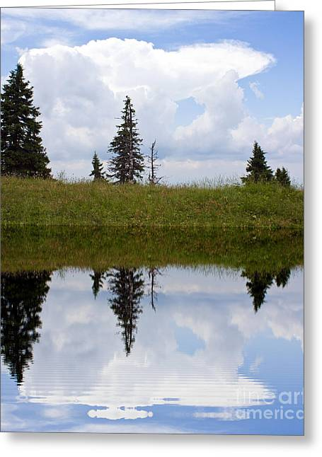 Reflection Of Lake Greeting Card by Odon Czintos