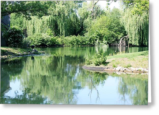 Willow Lake Digital Art Greeting Cards - Reflection Greeting Card by Pam Gleichman