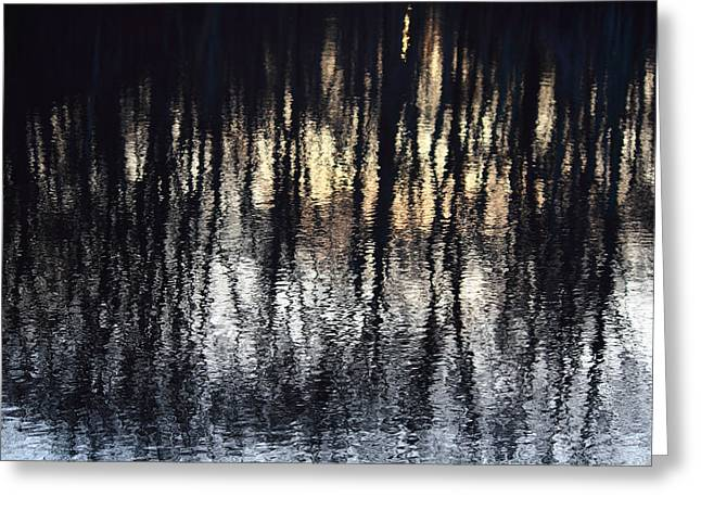 Andrew Pacheco Greeting Cards - Reflections Greeting Card by Andrew Pacheco