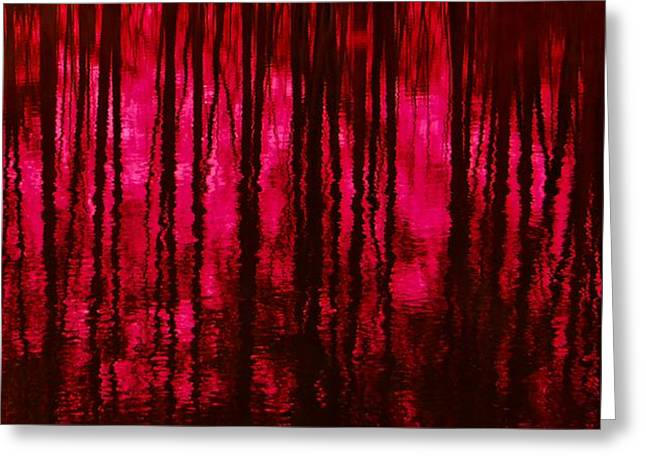 Reflections Greeting Card by David Lane