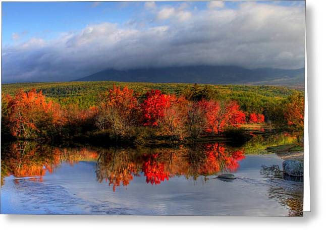 Sharon Batdorf Greeting Cards - Reflections in Maine Greeting Card by Sharon Batdorf