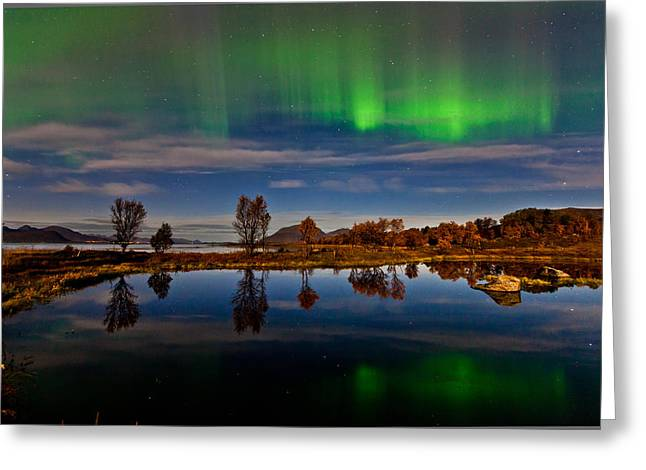 Aurora Lake Greeting Cards - Reflections in the pond Greeting Card by Frank Olsen