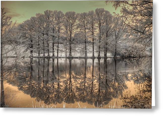 Process Greeting Cards - Reflections Greeting Card by Jane Linders