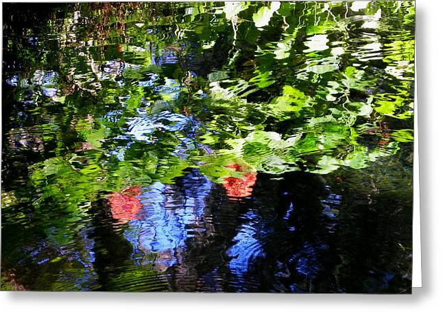 Reflections Of Fall In The Spring Greeting Card by Judy Wanamaker