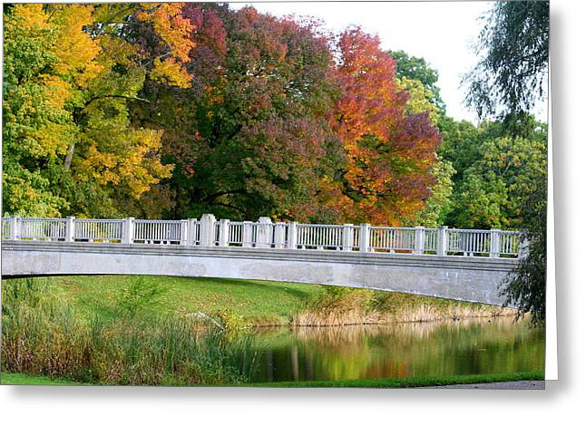 Lincoln Park Lagoon Greeting Cards - Reflections Of Fall Greeting Card by Kay Novy