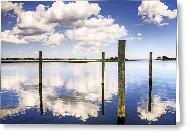 Reflections Of June Greeting Card by Vicki Jauron