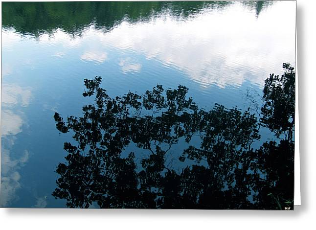 Best Sellers -  - Trees Reflecting In Water Greeting Cards - Reflections Of Nature Greeting Card by Debra     Vatalaro