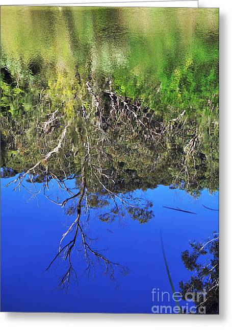 Blue And Green Greeting Cards - Reflections - Smooth vs. Ripples Greeting Card by Kaye Menner