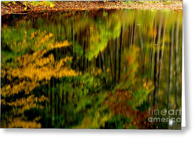 Midland Virginia Greeting Cards - Reflections Greeting Card by Thomas R Fletcher