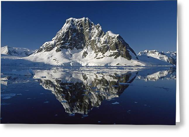 Wintry Photographs Greeting Cards - Reflections with ice Greeting Card by Antarctica