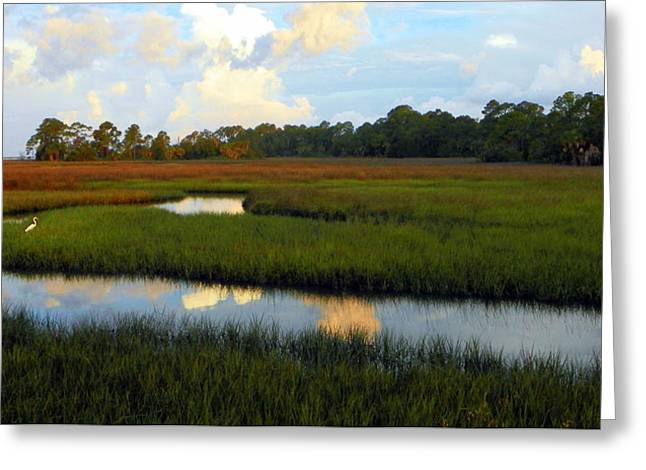 Recently Sold -  - Saw Greeting Cards - Reflective Presentation Greeting Card by Sheri McLeroy