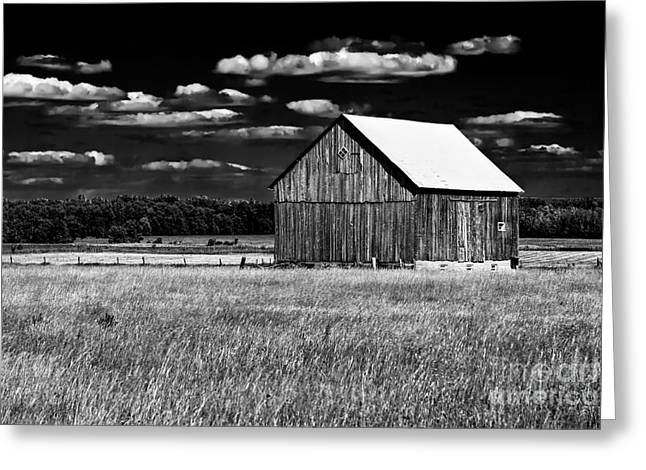 Wooden Building Greeting Cards - Reflective Greeting Card by Tim Wilson