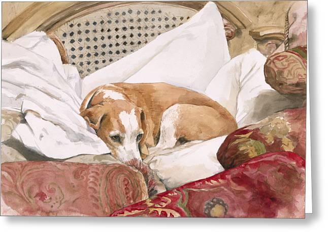 Regal Beagle Greeting Card by Debra Jones
