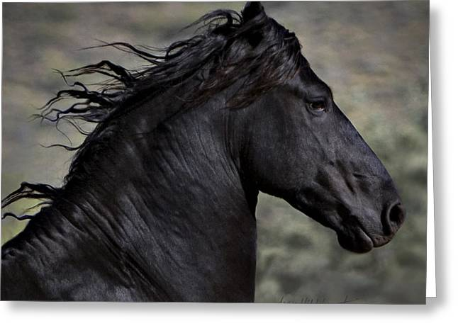 Horses Greeting Cards - Regal Greeting Card by Jean Hildebrant