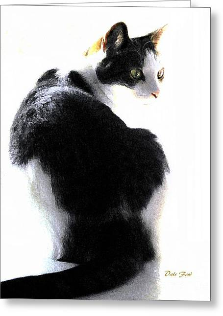 Photos Of Cats Digital Greeting Cards - Reggie Turning Greeting Card by Dale   Ford
