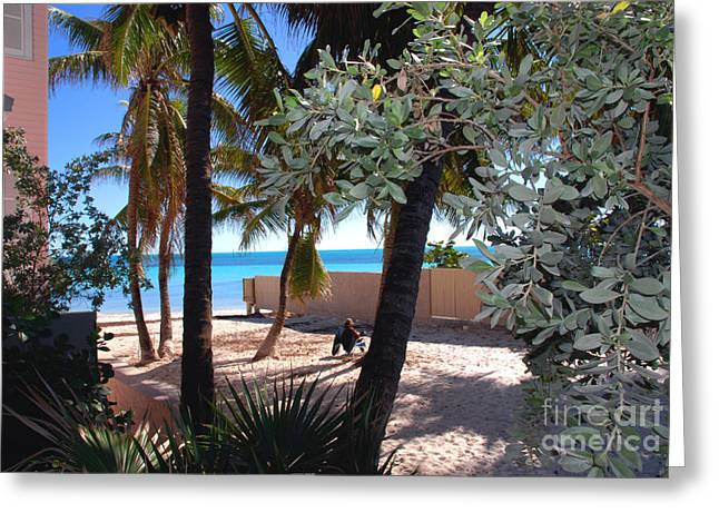 Key West Greeting Cards - Relaxing Dogs Beach in Key West Greeting Card by Susanne Van Hulst