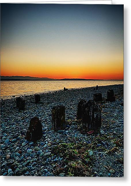 Panoramic Ocean Greeting Cards - Relics Greeting Card by James Heckt
