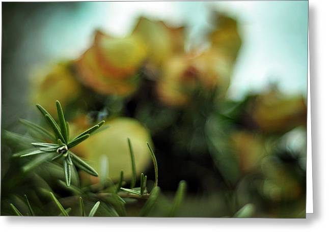 Floriography Greeting Cards - Remember to Live Greeting Card by Rebecca Sherman