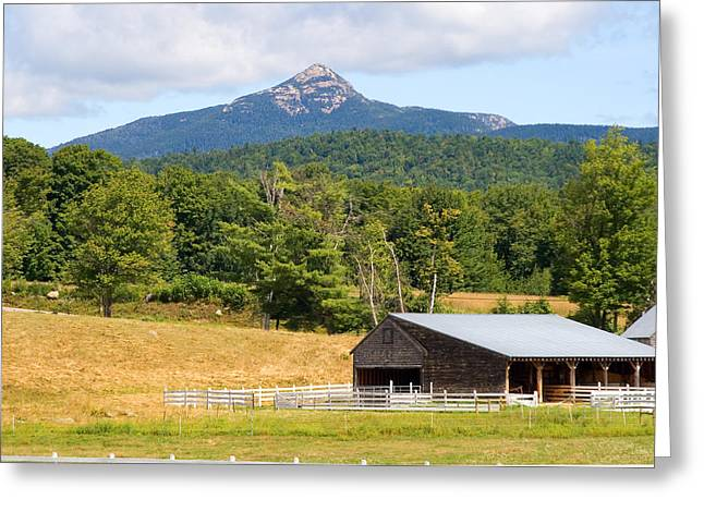 Mt Chocorua Greeting Cards - Remick Summer Greeting Card by Larry Landolfi
