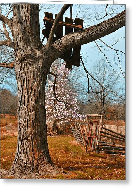 Farm Stand Greeting Cards - Remnants Greeting Card by JAMART Photography