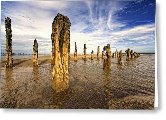 Wood Post Greeting Cards - Remnants Of Moorings In Water Greeting Card by John Short