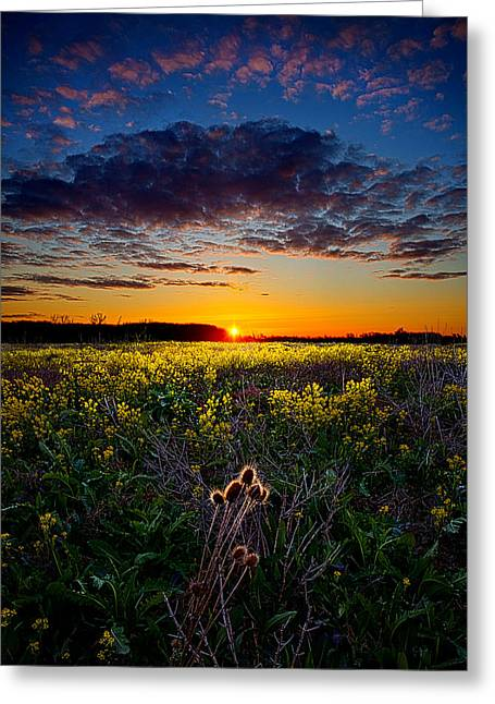 Geographic Greeting Cards - Remnants Greeting Card by Phil Koch