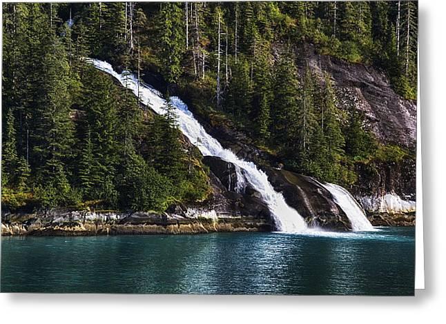 Alaska Prints Greeting Cards - Renewal Greeting Card by James Heckt